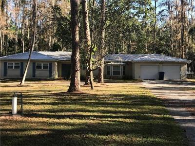 Wesley Chapel Single Family Home For Sale: 6716 Bonnie Blue Drive