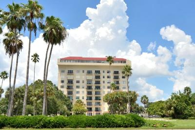Tampa Condo For Sale: 2109 Bayshore Boulevard #1002