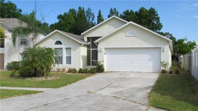 Valrico Single Family Home For Sale: 4708 Bear Claw Court
