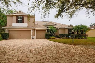 Tampa Single Family Home For Sale: 17215 Keely Drive