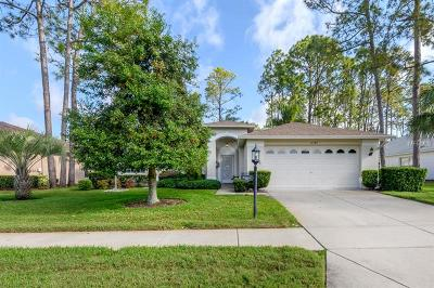 Hernando County, Hillsborough County, Pasco County, Pinellas County Single Family Home For Sale: 11147 Brambleleaf Way