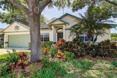 Palm Harbor Single Family Home For Sale: 744 Stonehenge Way