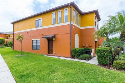 Wesley Chapel Townhouse For Sale