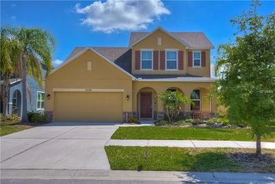 Riverview Single Family Home For Sale: 13338 Palmera Vista Drive