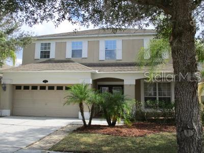 Tampa Single Family Home For Sale: 20219 Still Wind Drive