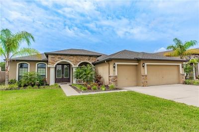 Apollo Beach Single Family Home For Sale: 330 Star Shell Drive