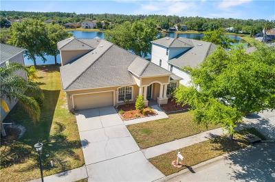 Land O Lakes Single Family Home For Sale: 10549 Deerberry Drive