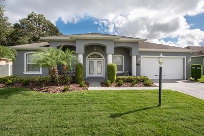 Plant City Single Family Home For Sale: 1741 Oakwood Estates Drive