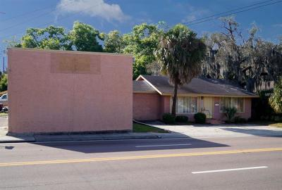 Hillsborough County Commercial For Sale: 5802 N Florida Avenue