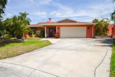 New Port Richey, New Port Richie Single Family Home For Sale: 3711 Corsair Court