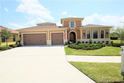 Wesley Chapel Single Family Home For Sale: 32040 Pinfeld Drive