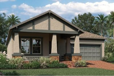 Winter Springs Single Family Home For Sale: 427 Dancing Water Drive