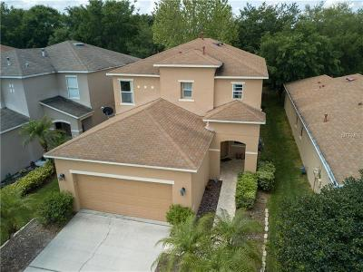 Wesley Chapel Single Family Home For Sale: 2433 Silvermoss Drive