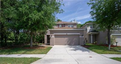 Wesley Chapel Single Family Home For Sale: 2532 Silvermoss Drive
