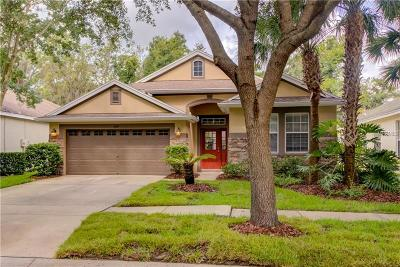 Lithia Single Family Home For Sale: 6119 Gannetwood Place