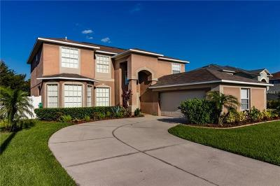 Riverview Single Family Home For Sale: 13010 Boatswain Mate Drive