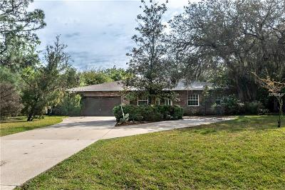 New Port Richey Single Family Home For Sale: 10721 Alico Pass