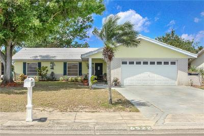 Apollo Beach Single Family Home For Sale: 6522 Solitaire Palm Way