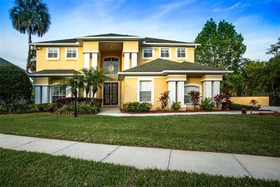 Hillsborough County Single Family Home For Sale: 13310 Waterford Run Drive