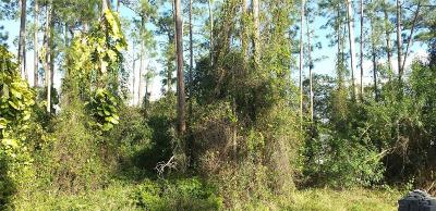 Orlando Residential Lots & Land For Sale: 14027 Marine Drive