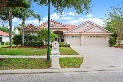 Tampa Single Family Home For Sale: 17849 Arbor Greene Drive