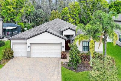 New Port Richey Single Family Home For Sale: 12369 Crestridge Loop