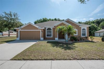 Valrico Single Family Home For Sale: 2053 Heartland Circle