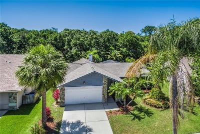 Tampa Single Family Home For Sale: 11912 Steppingstone Blvd