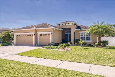 Wimauma Single Family Home For Sale: 10612 Carloway Hills Drive