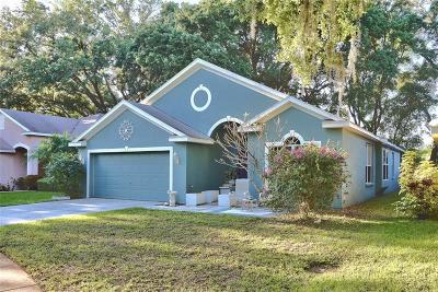 Tampa Single Family Home For Sale: 4639 Dunnie Drive