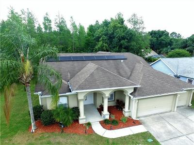 New Port Richey Single Family Home For Sale: 2130 Ground Squirrel Drive