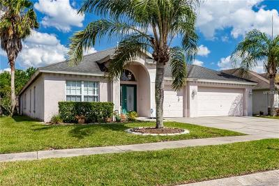 Tampa Single Family Home For Sale: 18209 Collridge Drive