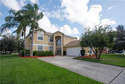 Wesley Chapel Single Family Home For Sale: 27203 Breakers Drive