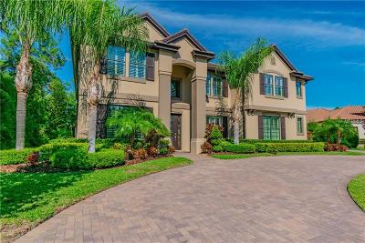 Tampa, Odessa, Lutz, Tarpon Springs, Oldsmar, New Port Richey, Palm Harbor, Brooksville Single Family Home For Sale: 11633 Calf Path Drive