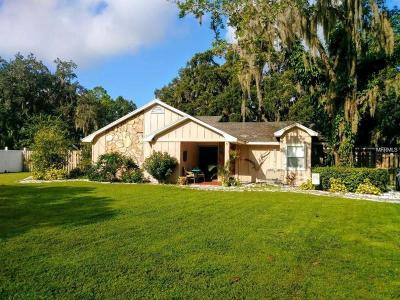 Odessa Single Family Home For Sale: 16204 Chastain Road