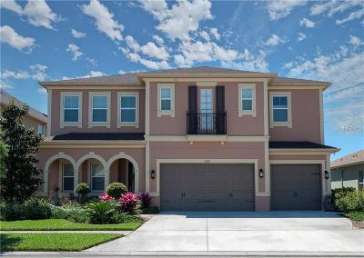 Wesley Chapel Single Family Home For Sale: 33192 Azalea Ridge Drive