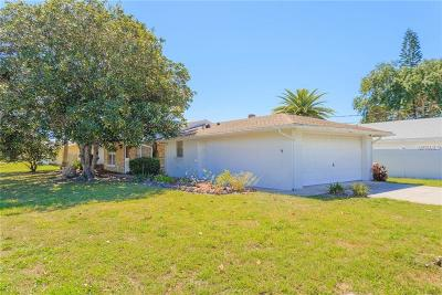 Hillsborough County, Pasco County, Pinellas County Single Family Home For Sale: 13936 Helen Avenue
