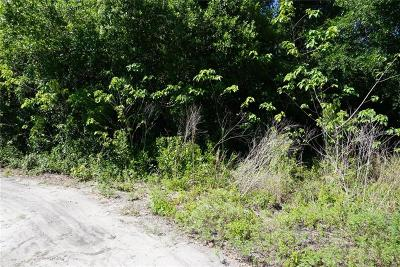 Dade City, San Antonio Residential Lots & Land For Sale: 38741 Chapman Street