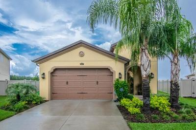 Wesley Chapel Single Family Home For Sale: 29272 Perilli Place