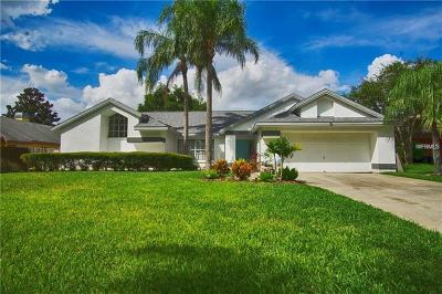 Palm Harbor Single Family Home For Sale: 1597 Powder Ridge Drive