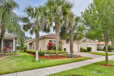 Wimauma Single Family Home For Sale: 15726 Crystal Waters Drive