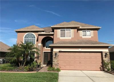 Wesley Chapel Single Family Home For Sale: 4546 Pointe O Woods Drive