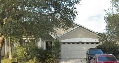 Tampa Single Family Home For Sale: 18002 Misty Blue Lane