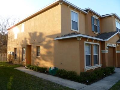 Apollo Beach, Brandon, Citrus Park, Dover, Gibsonton, Lithia, Lutz, Lutz (tampa Area), Odessa, Plant City, Riverview, Ruskin, Seffner, Sun City Center, Tamp, Tampa, Temple Terrace, Thonotosassa, Unincorporated, Valrico, Wimauma, Zephyrhills Rental For Rent: 4527 Limerick Drive