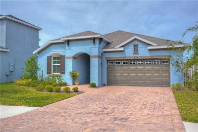 Tampa Single Family Home For Sale: 8004 Red Orchard Court