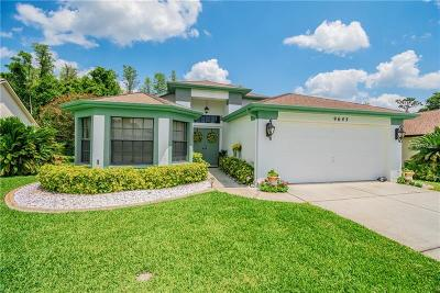 New Port Richey Single Family Home For Sale: 9645 Conservation Drive