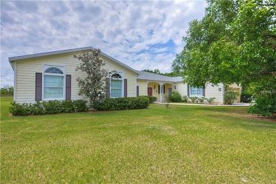 Lithia Single Family Home For Sale: 11315 Wagon Trail Run