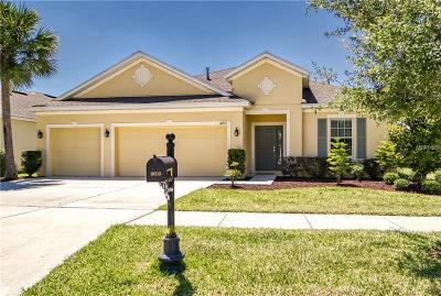 Hillsborough County Single Family Home For Sale: 10213 Caraway Spice Avenue