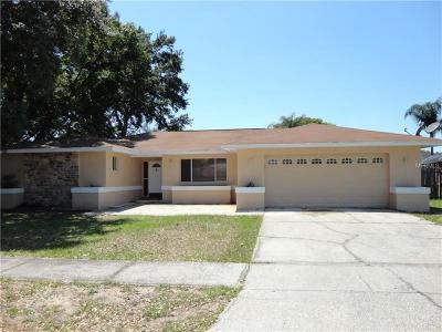 Seffner Single Family Home For Sale: 3102 Indigo Place