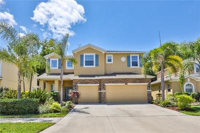 Riverview Single Family Home For Sale: 10413 Hampton Meadow Way